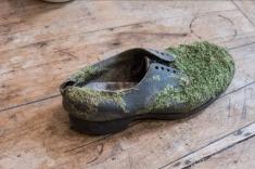 2019.1 Shoe 1
