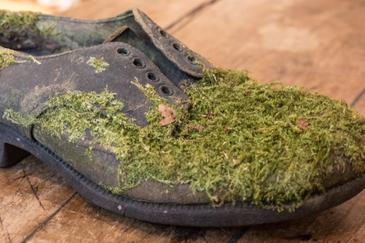 2019.1 Shoe 2